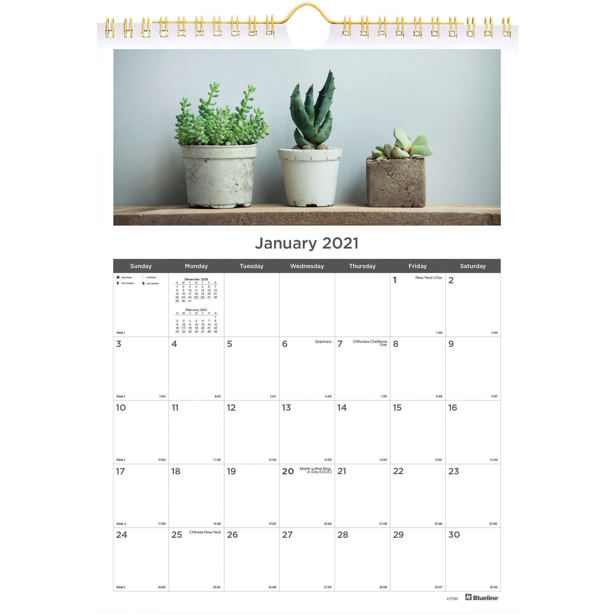 Rediform Succulent Plants Wall Calendar Monthly 1 Year January 2021 till December 2021 1 Month Single Page Layout Twin Wire Wall REDC x