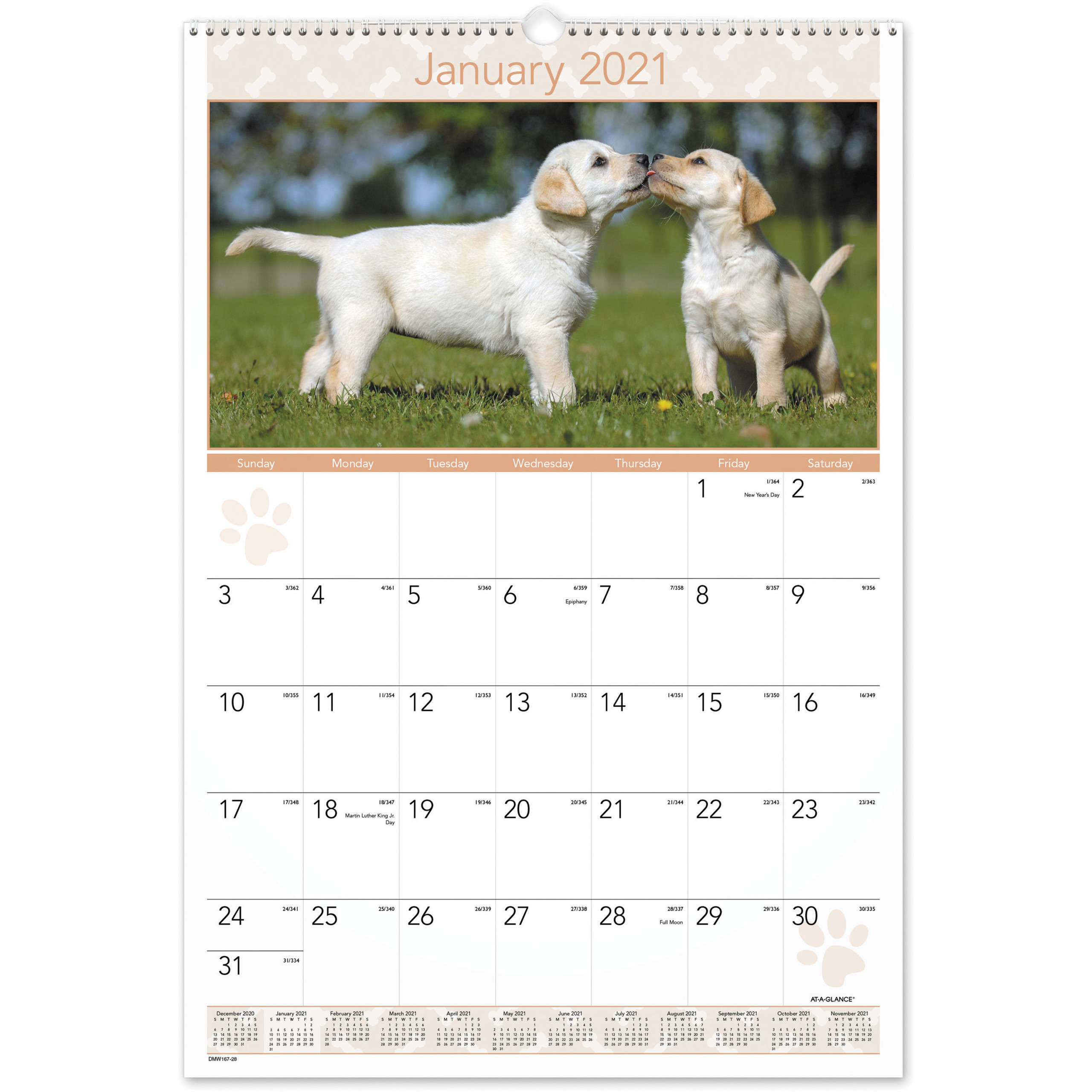 At A Glance Puppies Monthly Wall Calendar Julian Dates Monthly 1 Year January 2021 till December 2021 1 Month Single Page Layout 15 12 AAGDMW x