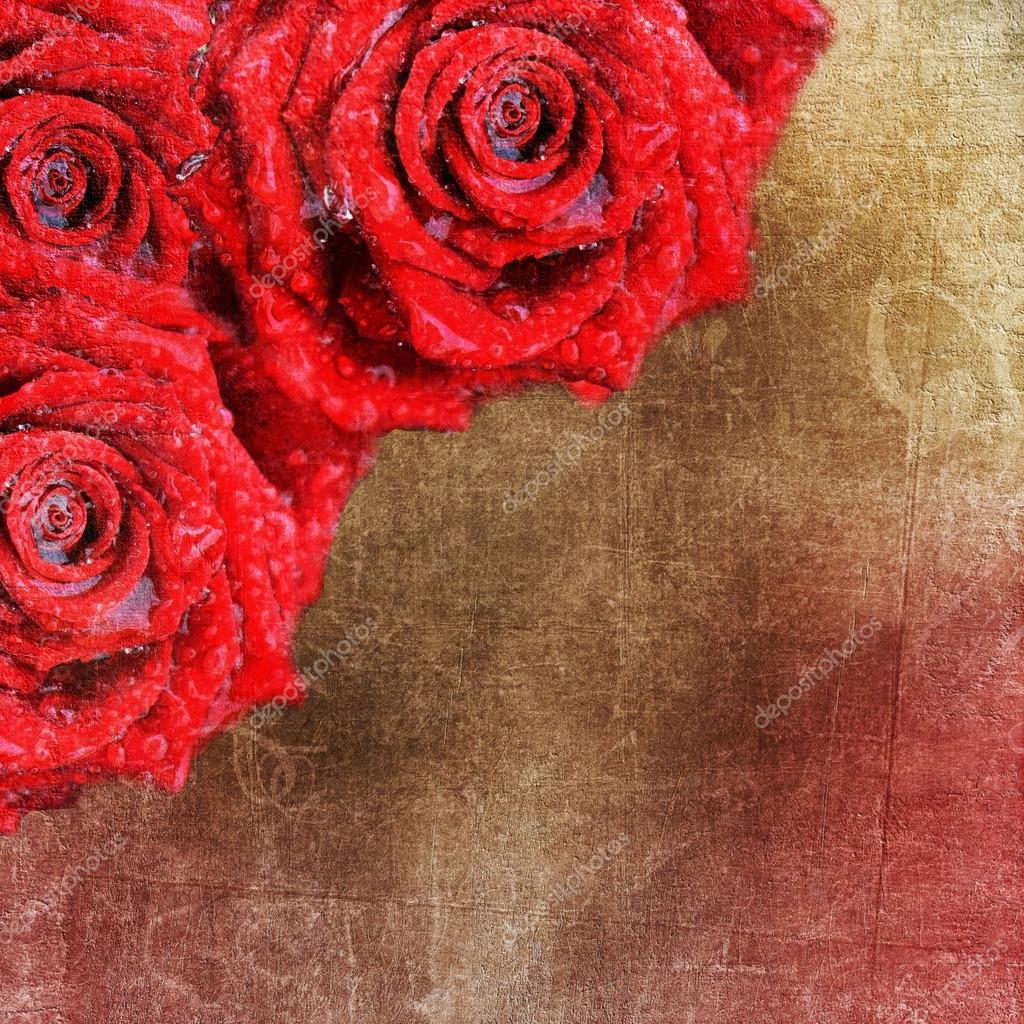 depositphotos stock photo backgrounds with red roses for