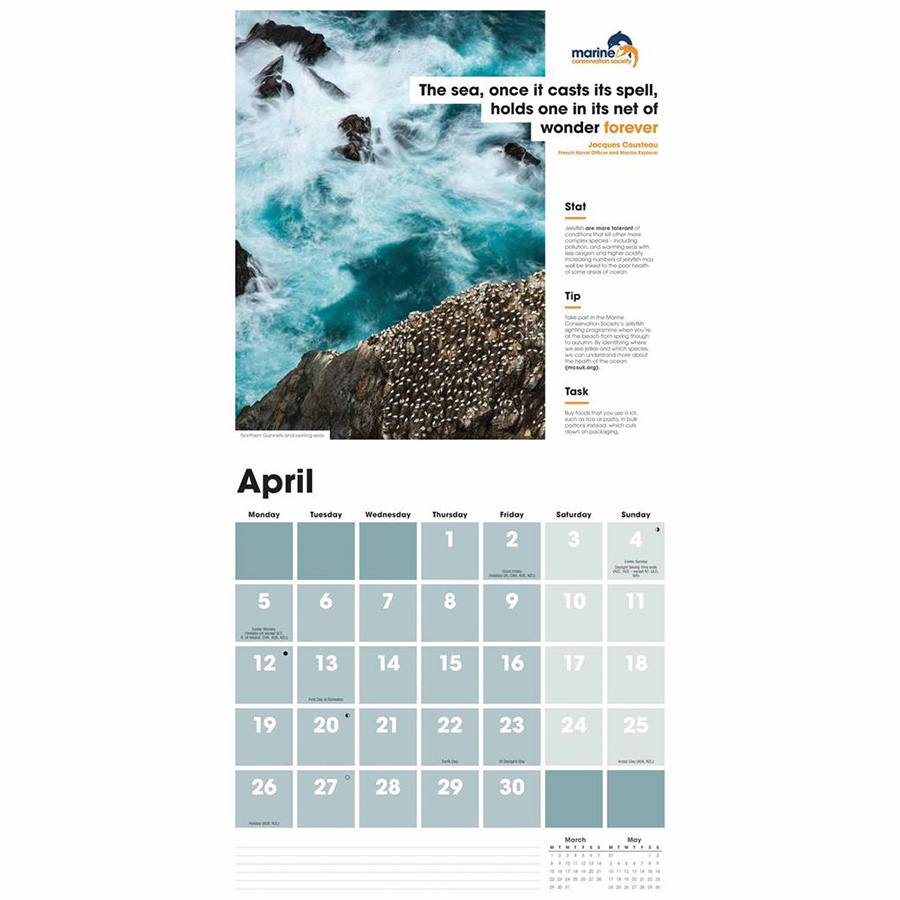 sea change mcs 2021 wall calendar