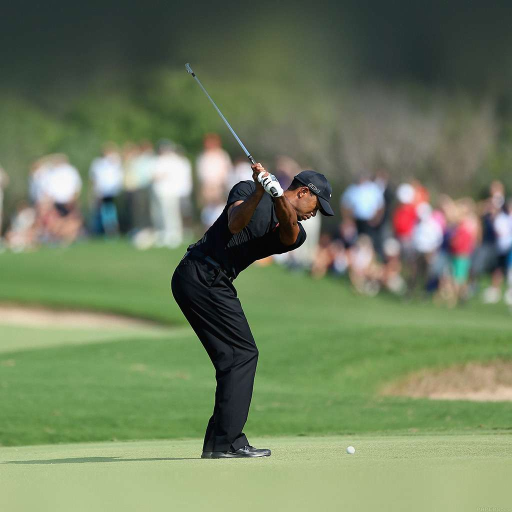 papers he35 tiger woods golf sports 6 wallpaper