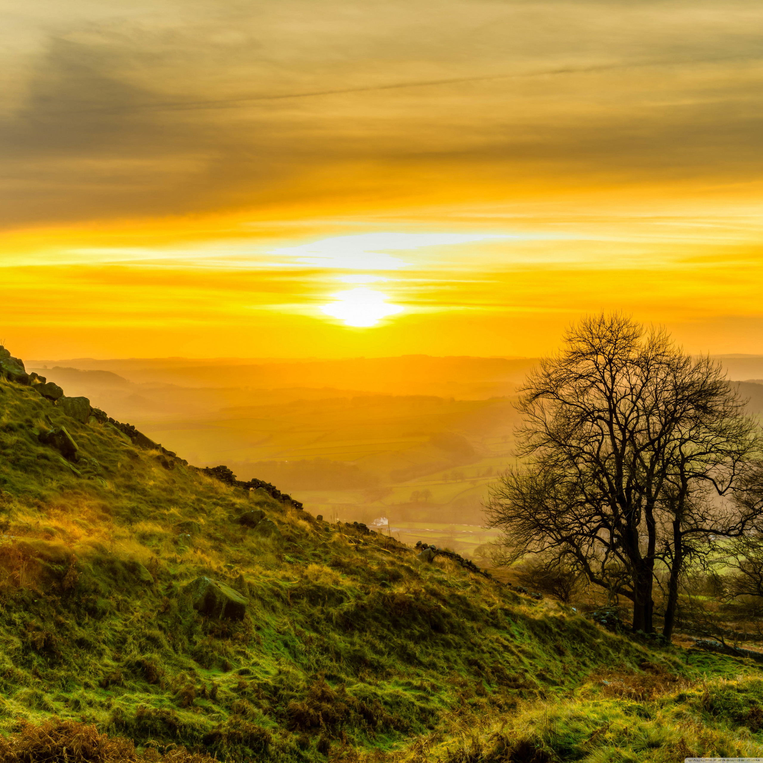 yellow sunset hdr wallpapers