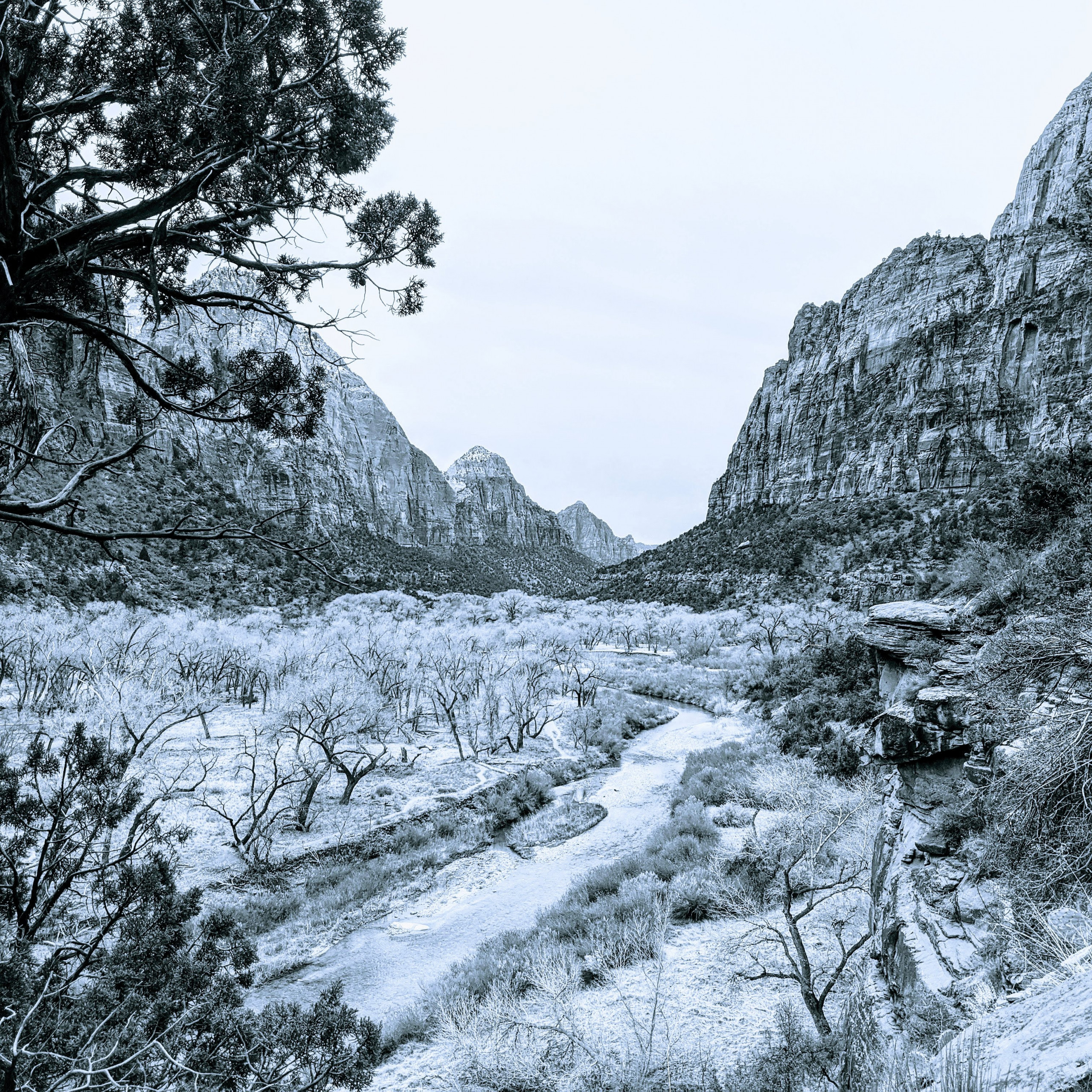first post of scenic view at zion national park oc wallpaper