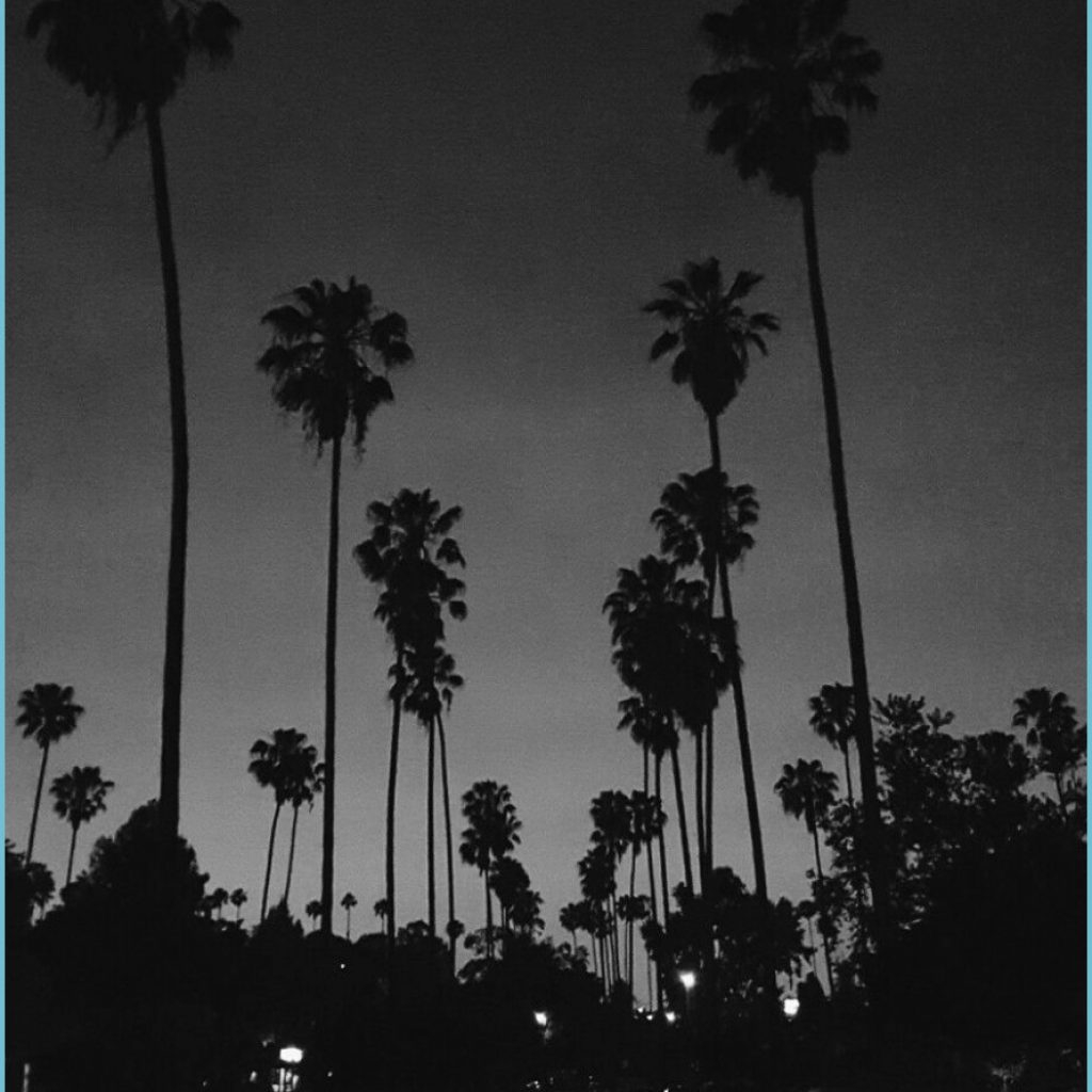 echo park lake in 8 black aesthetic wallpaper black and black and white aesthetic wallpaper