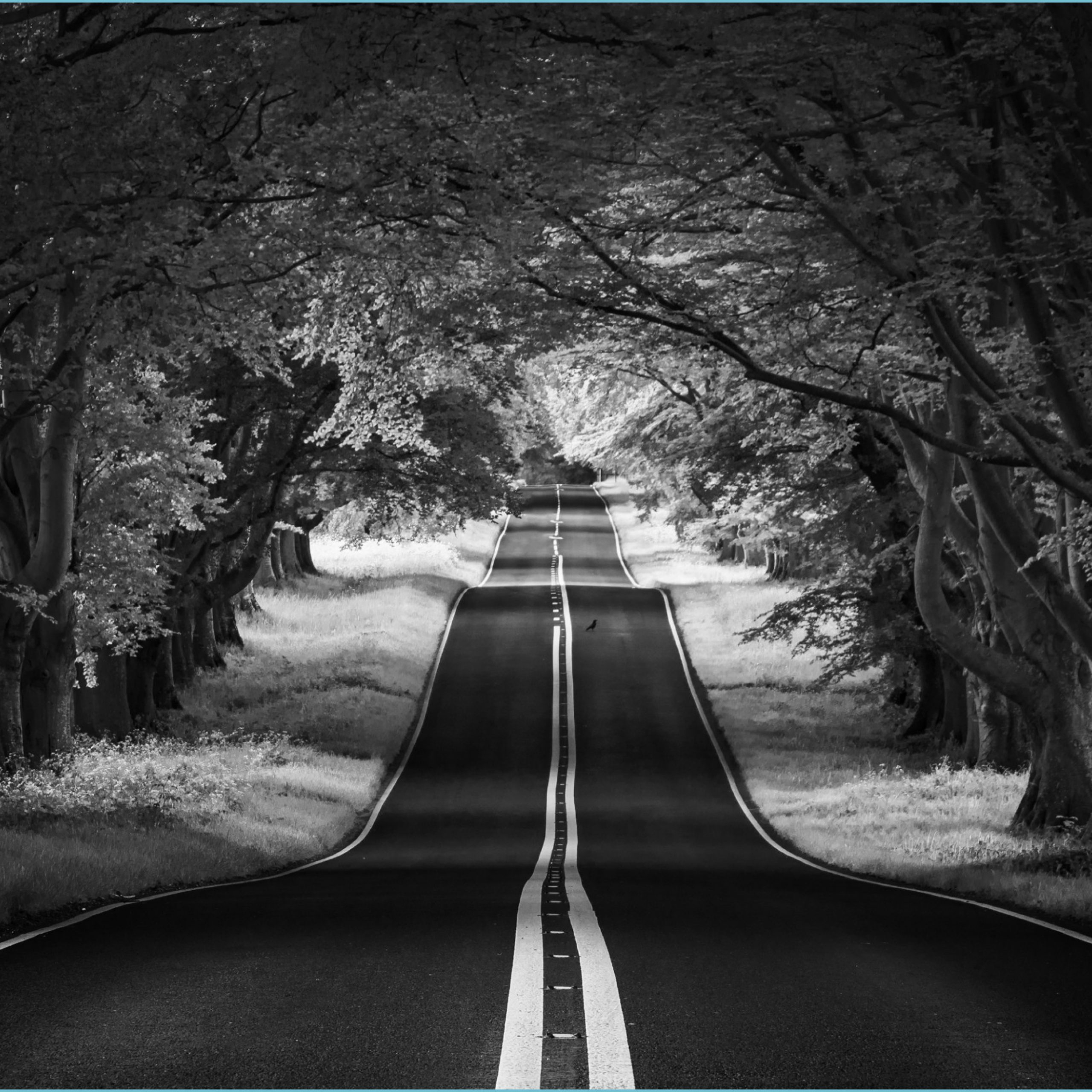 road landscape aesthetic black and white ultra hd desktop aesthetic black and white wallpaper scaled