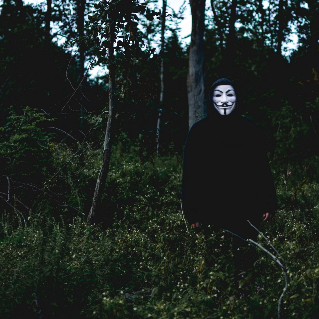 mask man forest anonymous 4k