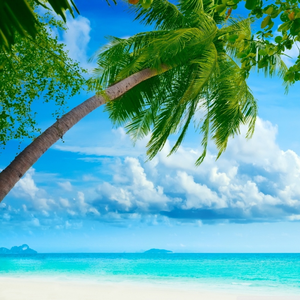 tropical beach resorts wallpapers