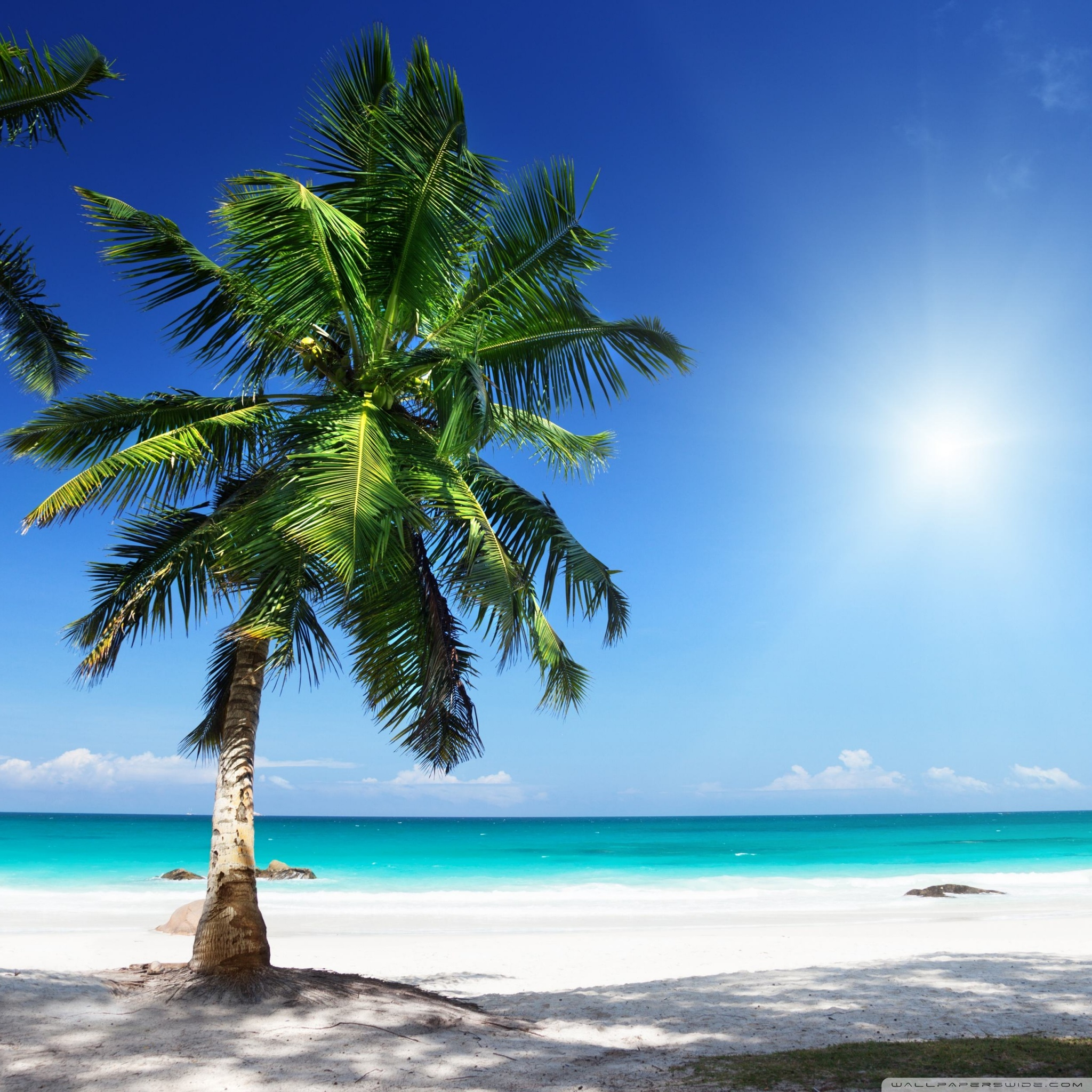 sunny beach 2 wallpapers