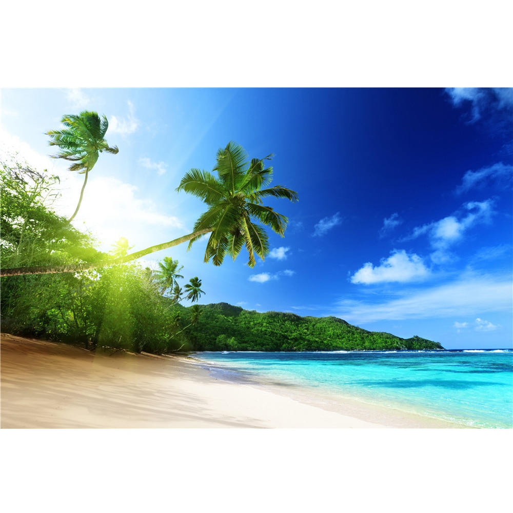 Tropical Beach Backdrop for graphy Blue Sky and Sea Palm Trees Summer Holiday Seaside Wedding Scenic