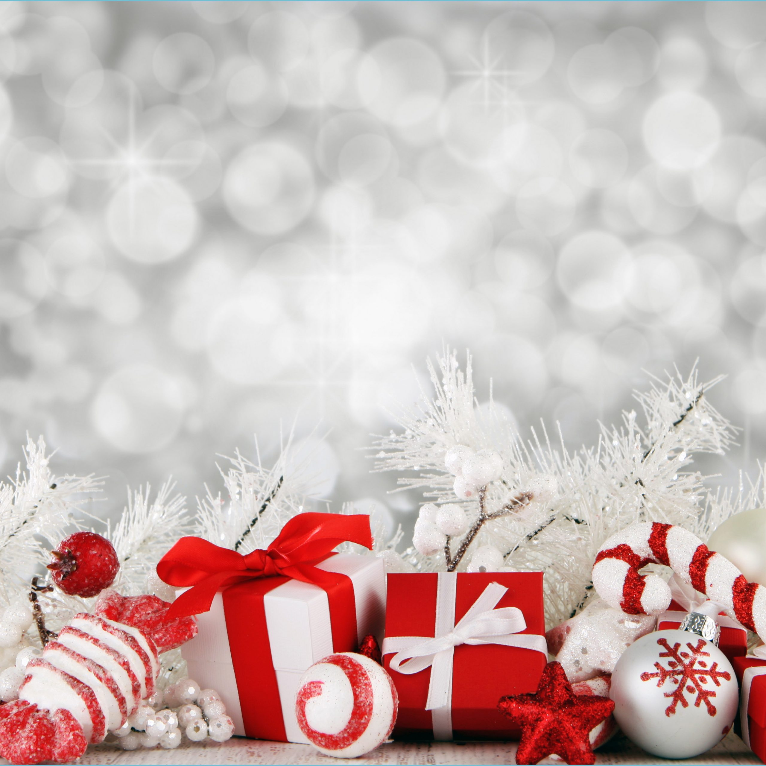 best 14 christmas backgrounds photography on hipwallpaper christmas background wallpaper