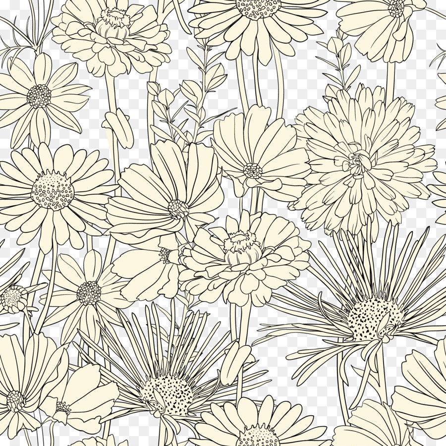 flower drawing transparent background 19