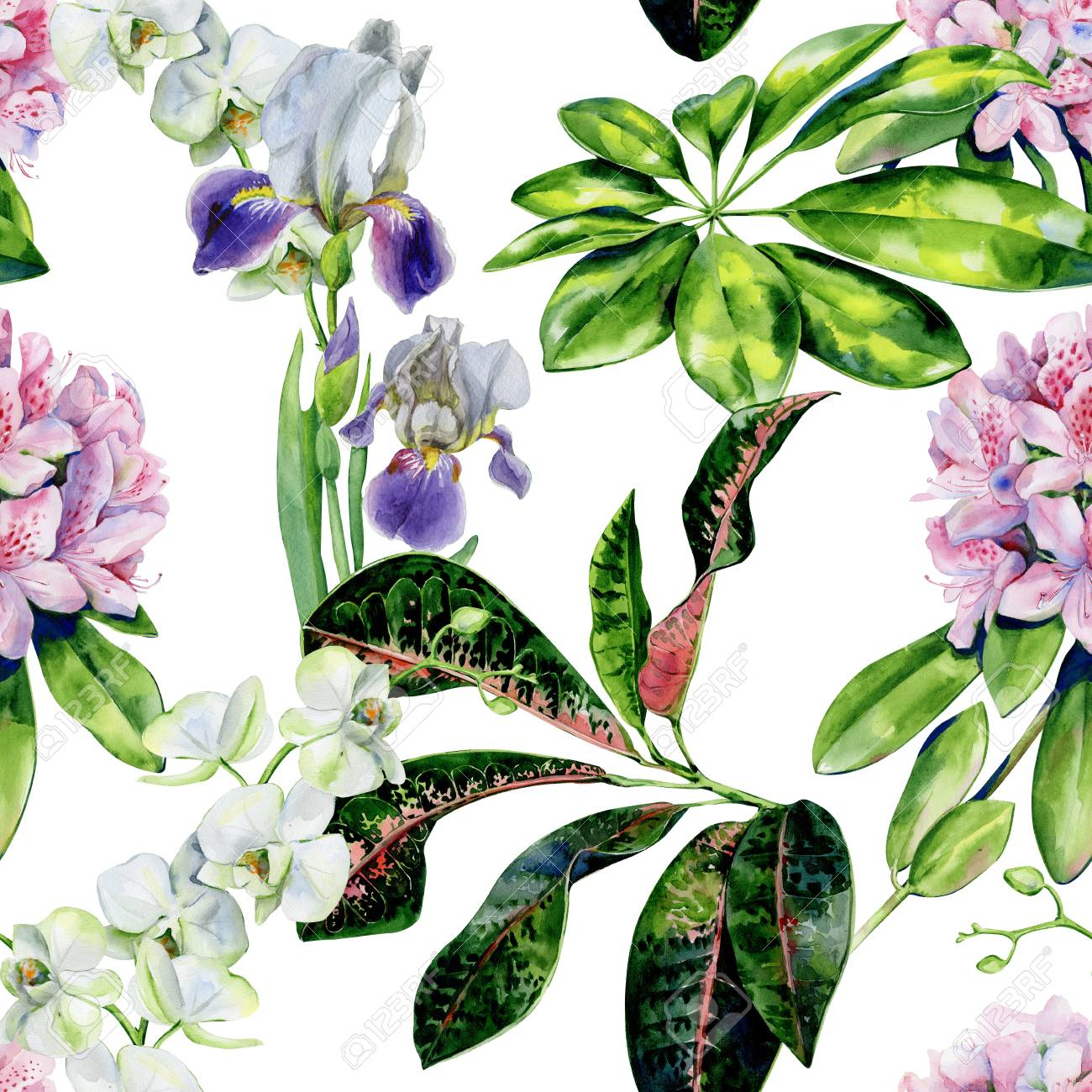 photo tropical flowers and iris seamless pattern interior wallpaper with pink azalea and white orchids exo