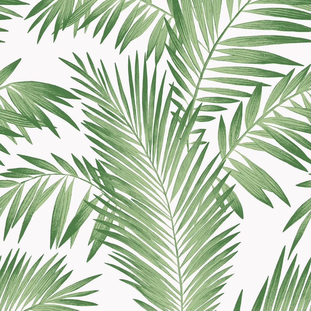 14 tropical palm green wallpaper palm leaves aesthetic background