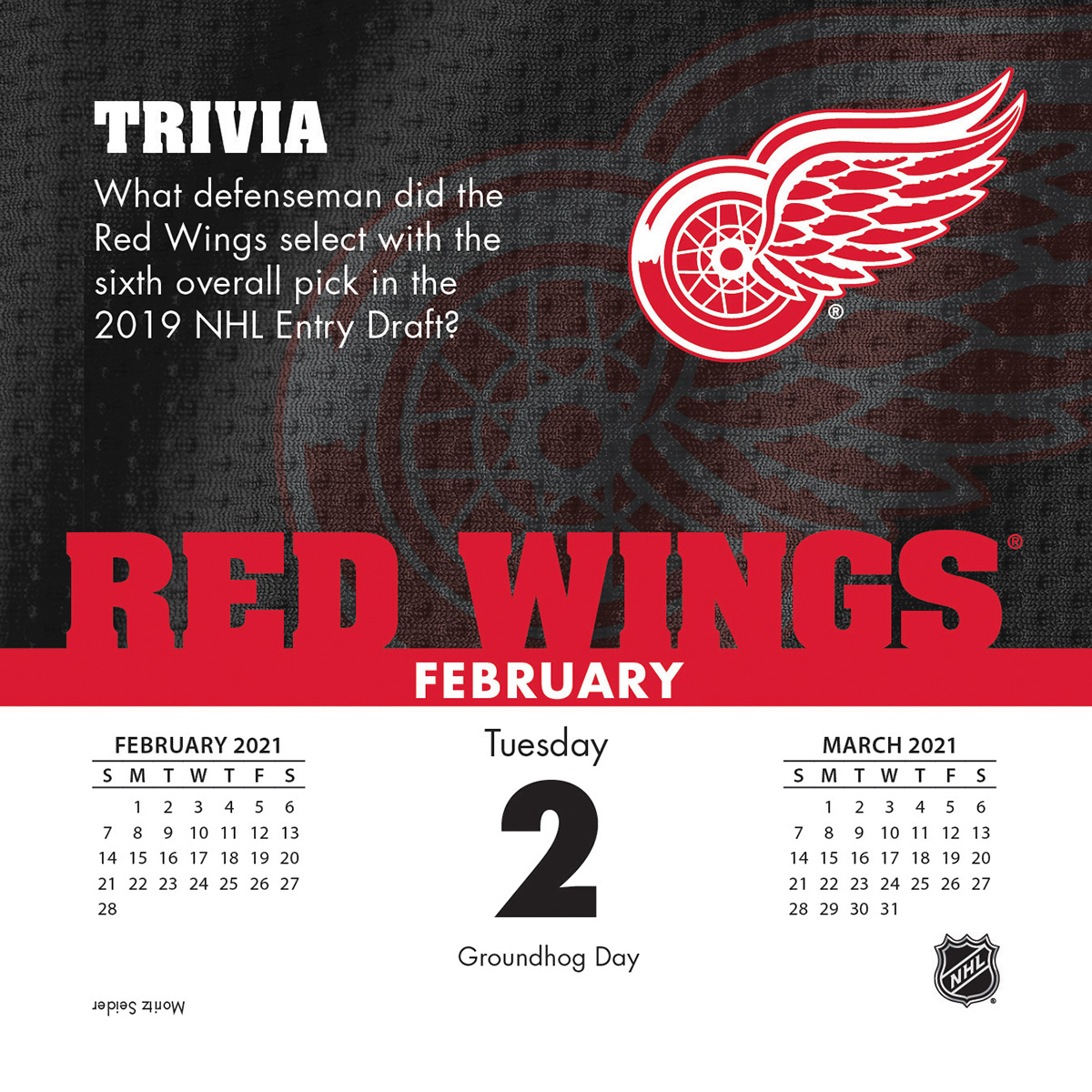 detroit red wings 2021 page a day box calendar 4451