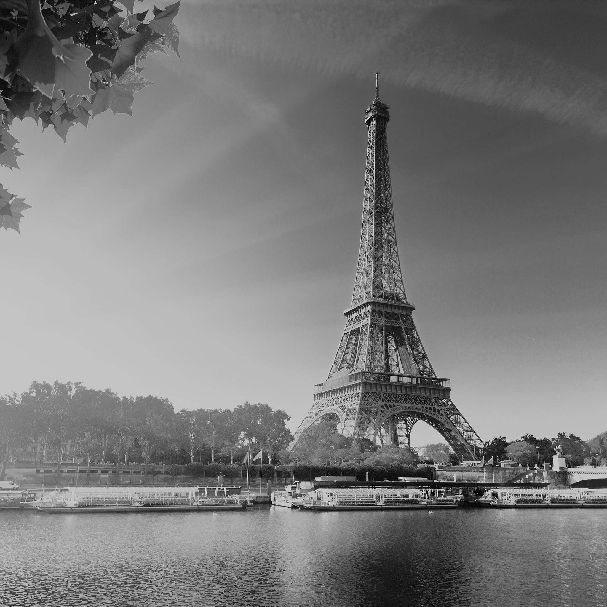 ihxmTTi black and white paris wallpaper for iphone
