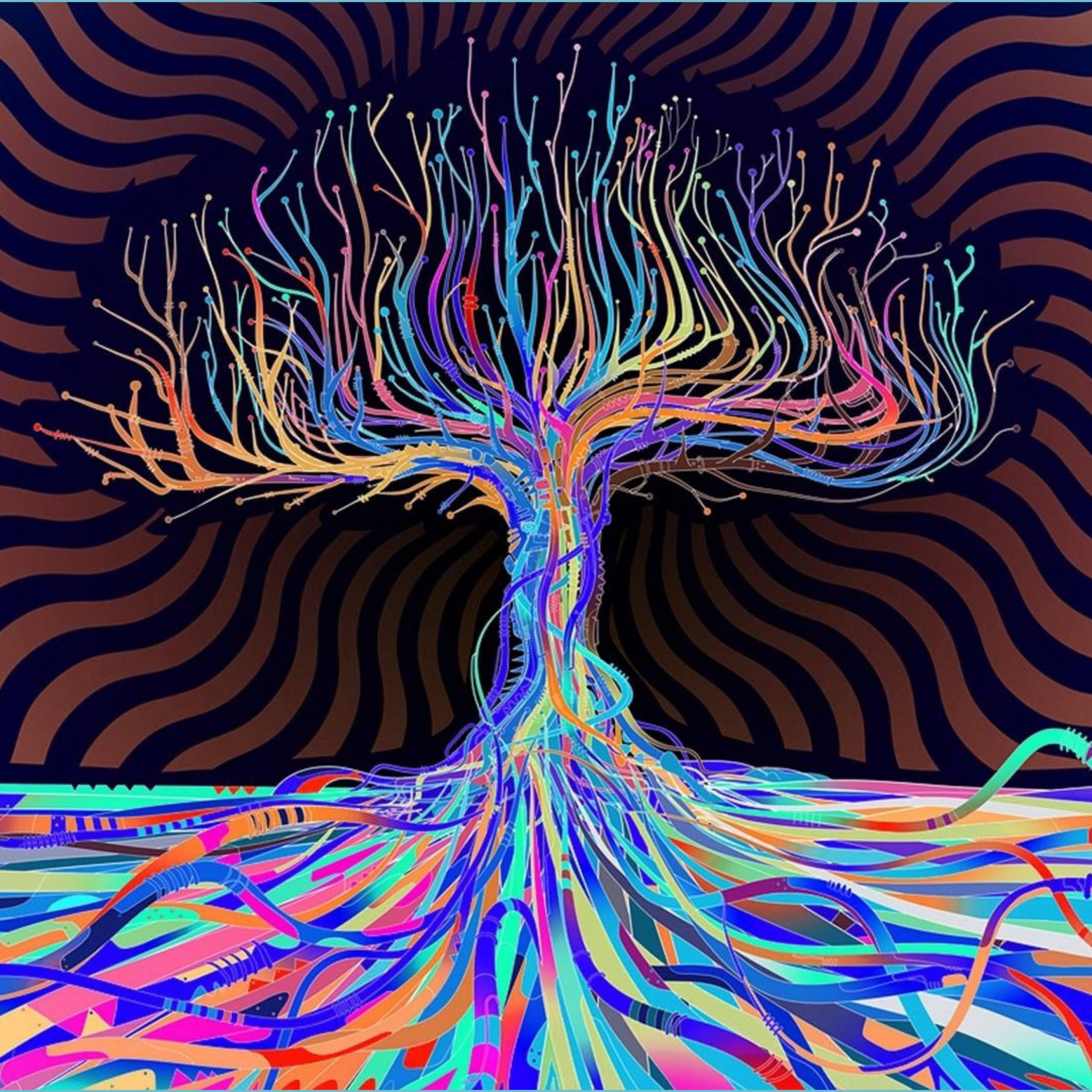 psychedelic hd 12k wallpapers top free psychedelic hd 12k trippy wallpapers 4k