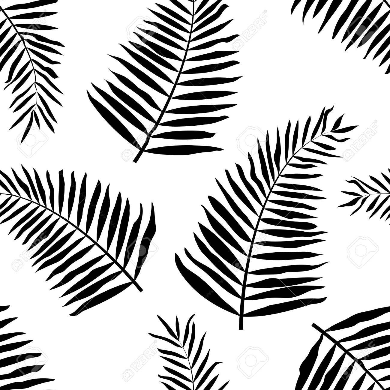 photo stock vector vector seamless pattern with black tropical leaves on white background for wallpapers decoration inv