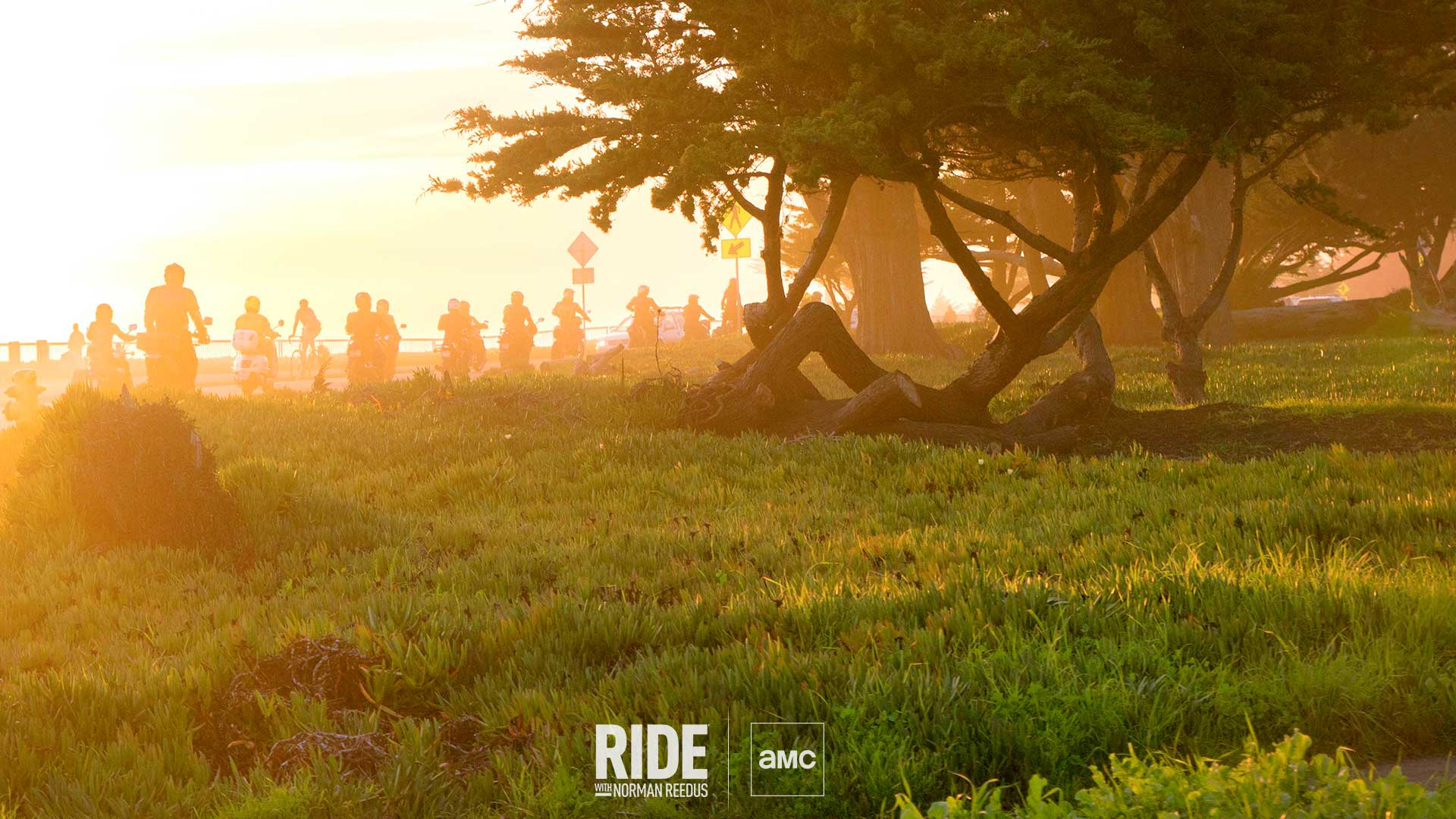zoom background ride scene field