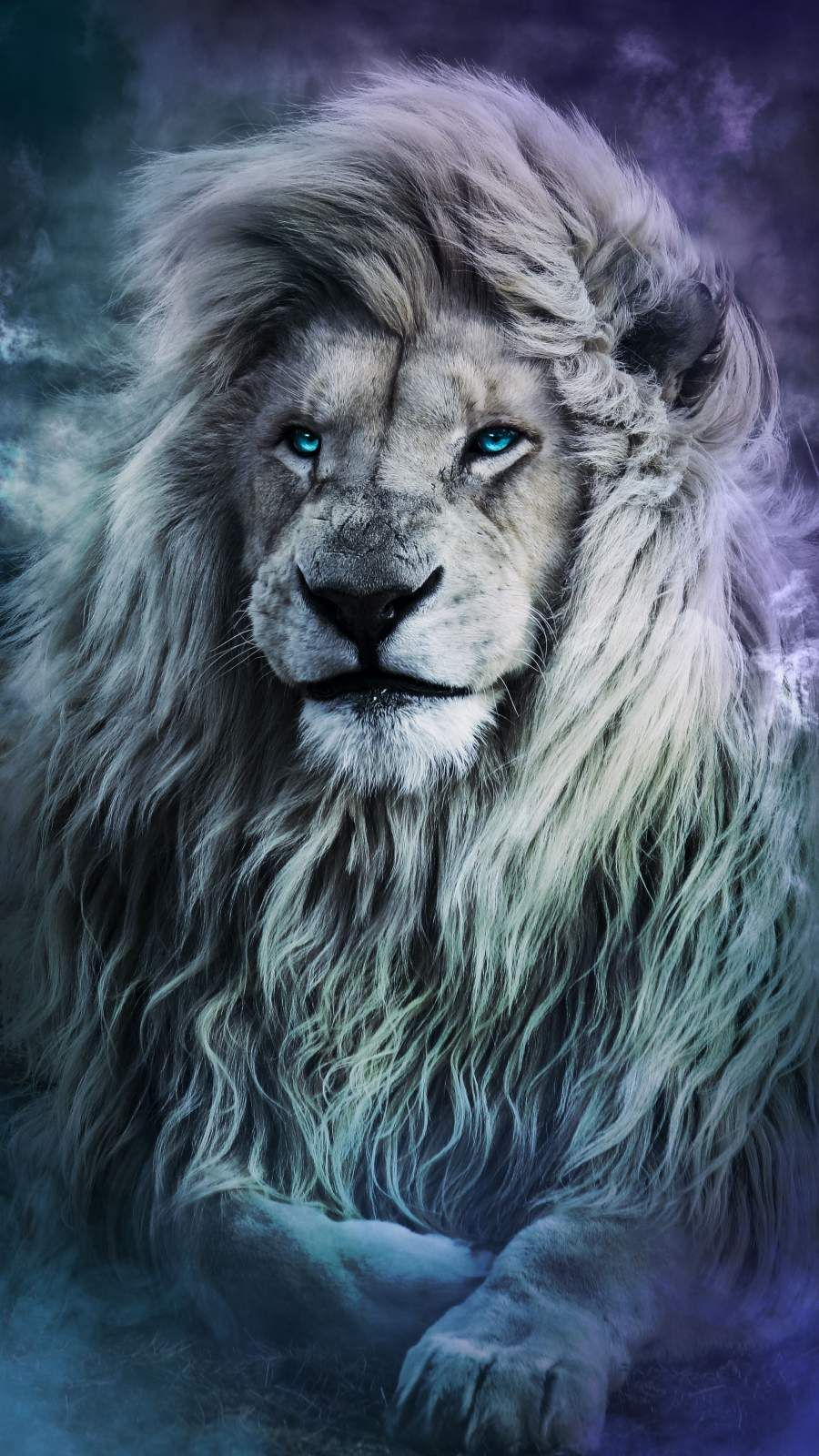 Blue Eyes Lion iPhone Wallpaper iPhone Wallpapers