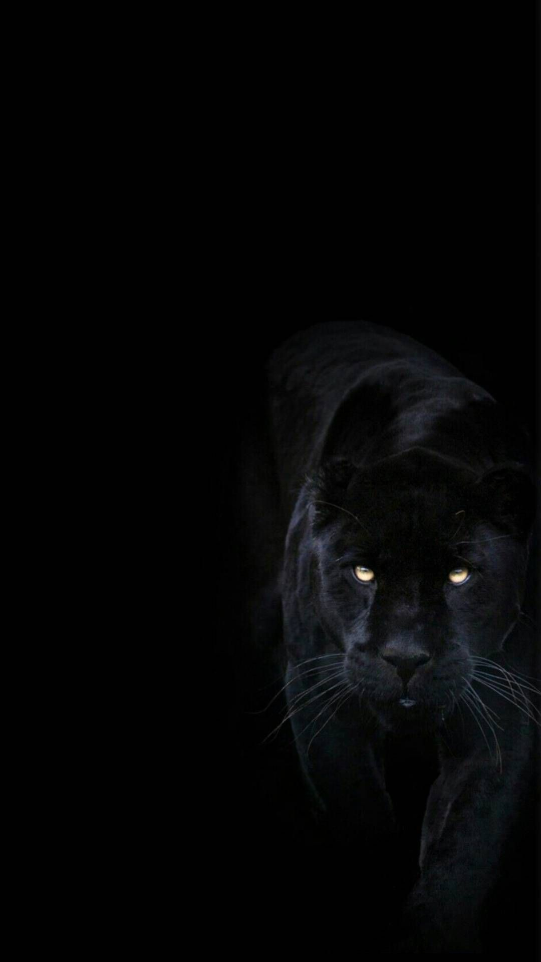 Dark IPhone Backgrounds – Cool Backgrounds