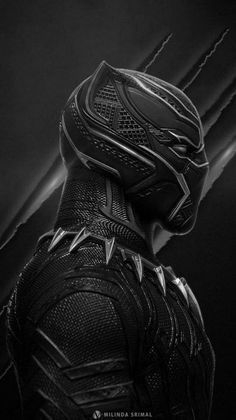 Black Panther wallpaper by angrophotos786 a3 Free on ZEDGE™