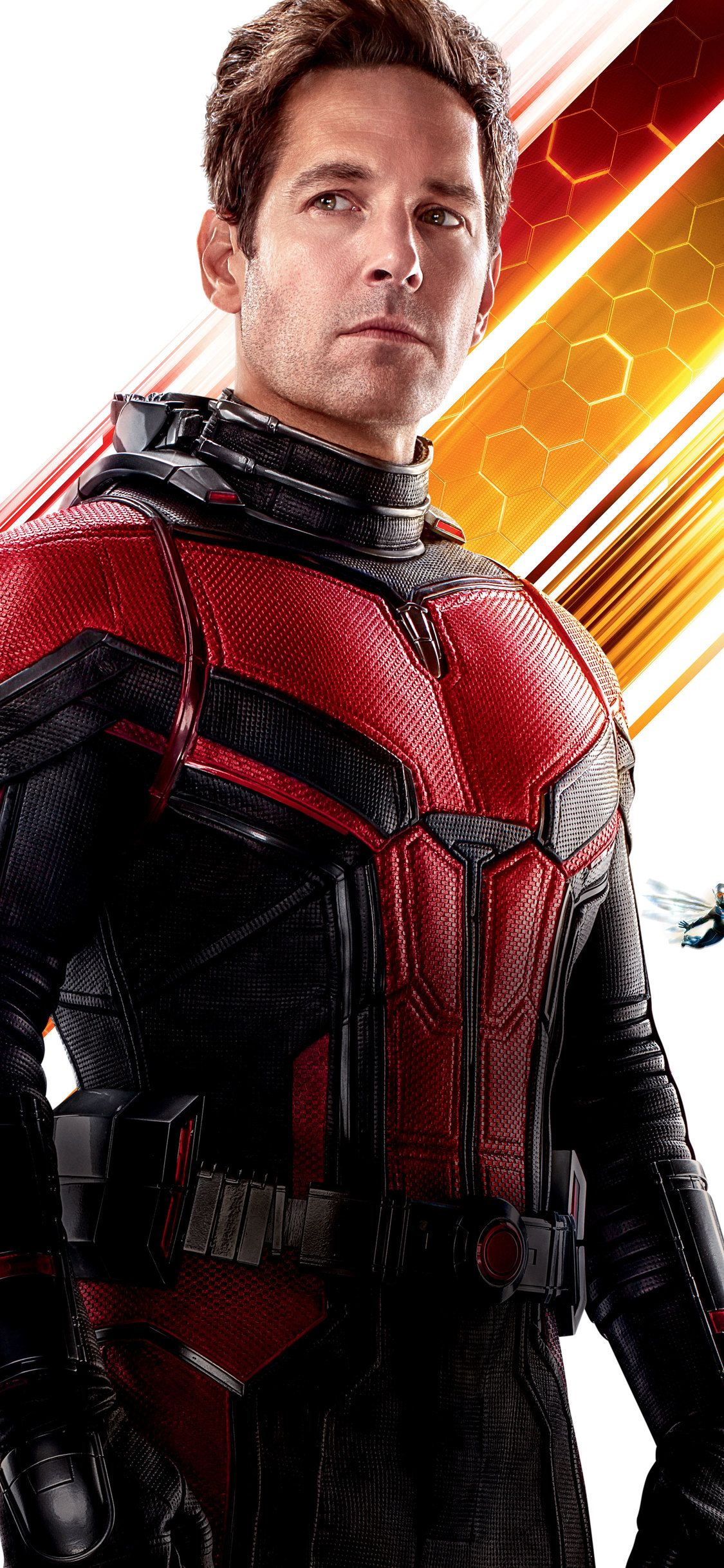 Paul Rudd As Antman In Ant Man And The Wasp 10k Wallpapers
