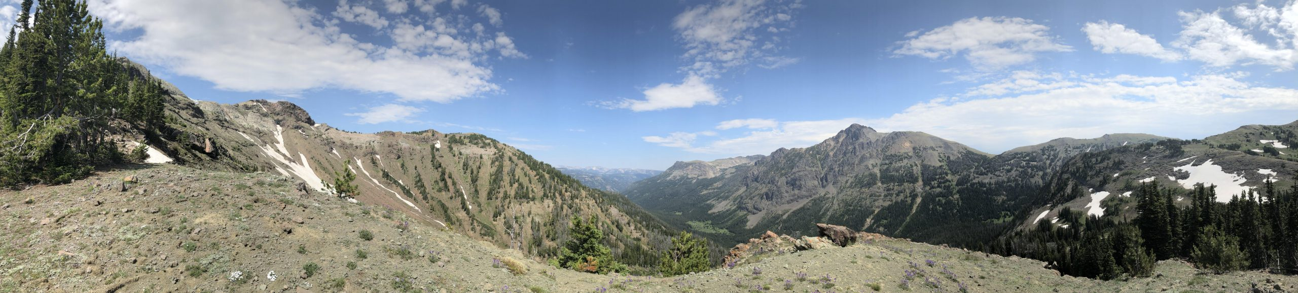 Mountain top view Custer Gallatin National forest [ x4000] don't know exact resolution [OC]