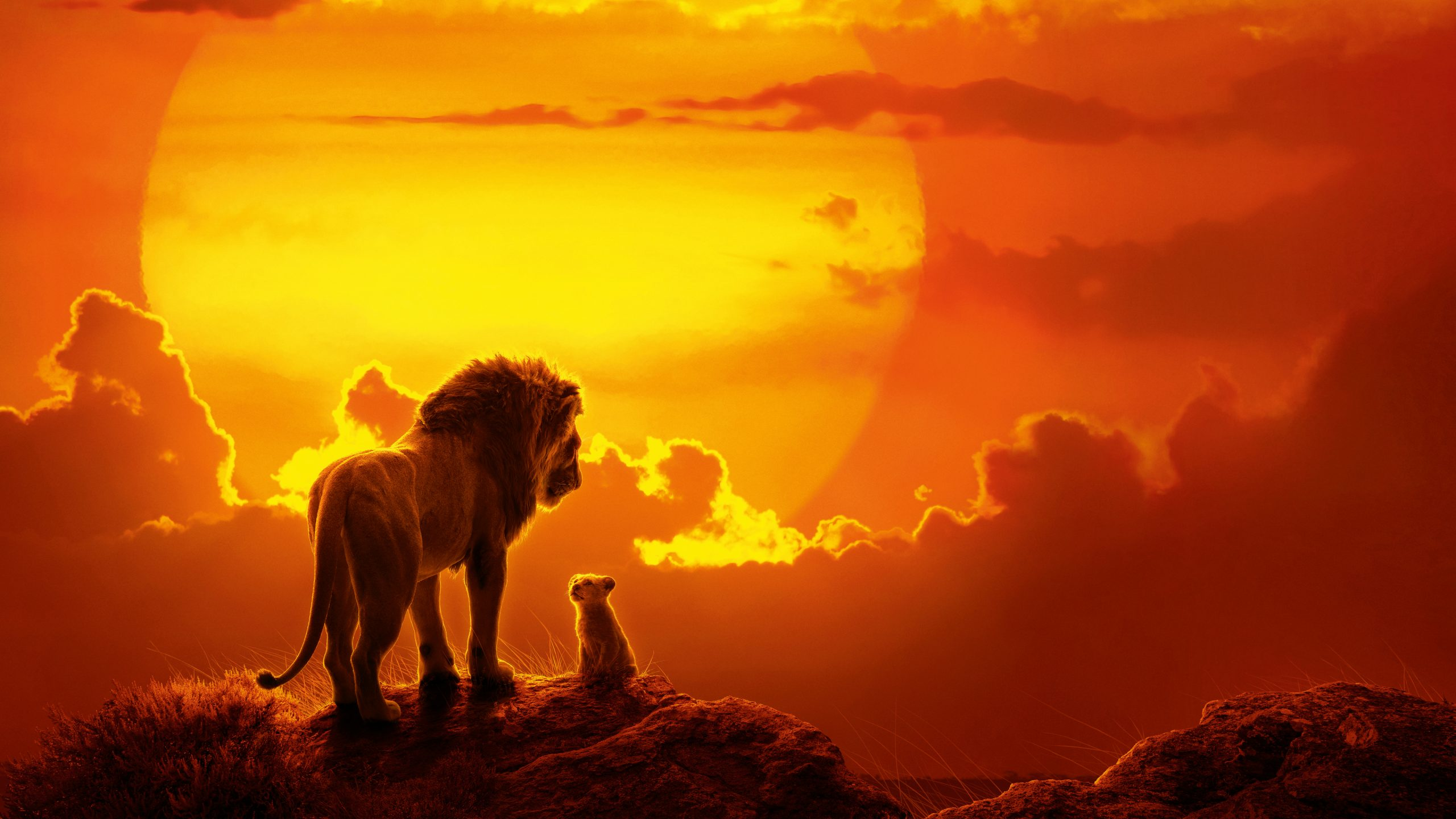the lion king movie 2