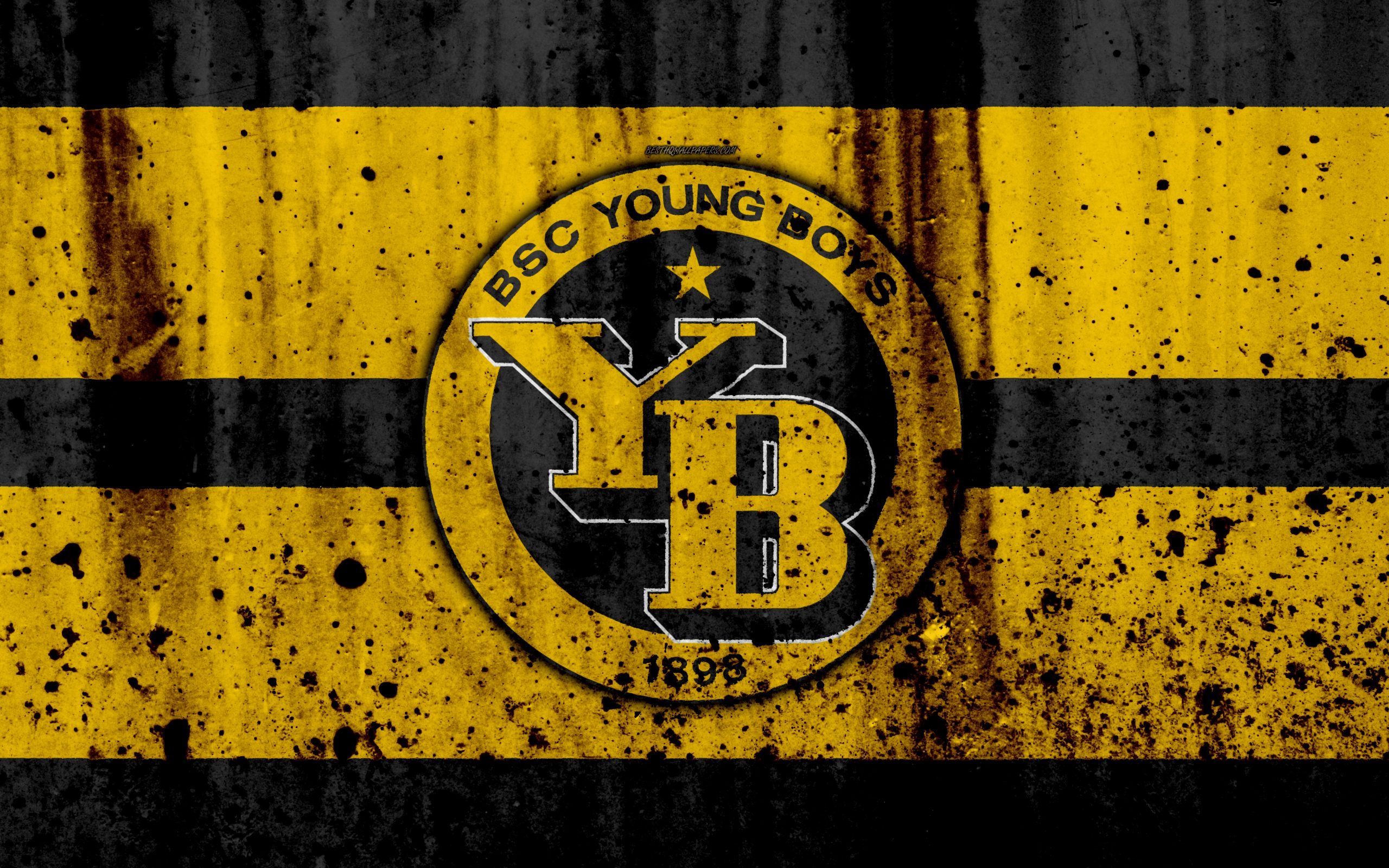 young boys fc 4k logo stone texture grunge