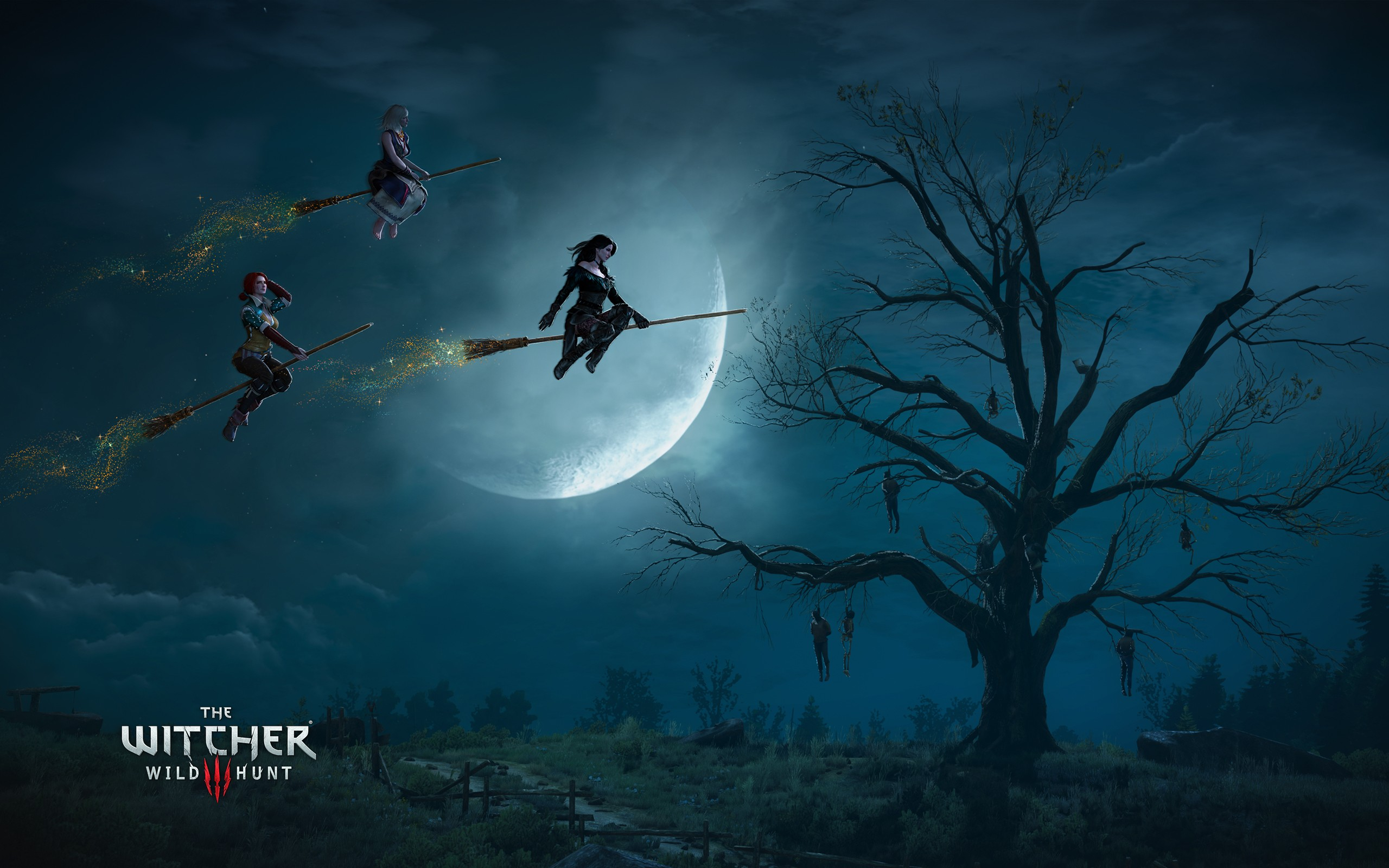 the witcher 3 wild hunt witches wallpapers