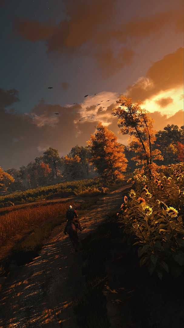 A collection of my favorite 4K Witcher 3 screenshots that I ve taken over the past two years The game is by far the most beautiful game I ve ever played in my 20 years of PC gaming